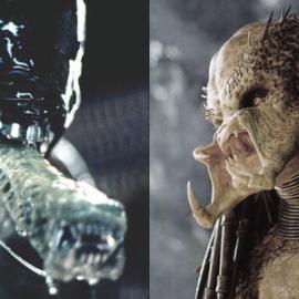Alien vagy Predator?